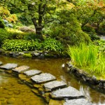 Stone Path over Water