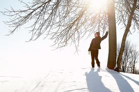 Winter Meditation in Snow with Tree