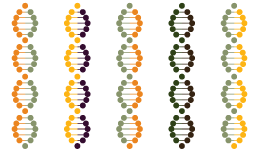 Multicolored DNA Infographic