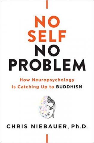 No Self No Problem Book Cover